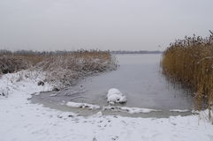Winter view of coast Lake of Pogoria Royalty Free Stock Image