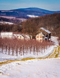 Winter view of a farm and distant mountains in rural Adam's Coun. Ty, Maryland Stock Images