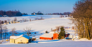 Winter view of farm fields and rolling hills in rural York Count Royalty Free Stock Images
