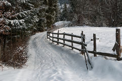 Winter view with a fence Royalty Free Stock Photo