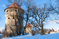 Winter view of fortress towers Tallinn. Estonia Royalty Free Stock Photo