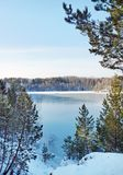 Winter view of freezing lake among forested shores in sunny day Royalty Free Stock Photography
