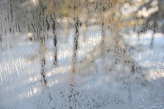 Winter view through frosted glass. Stock Photos