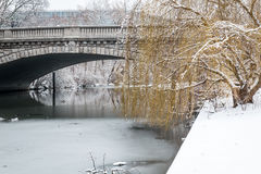 Winter view of a frozen river under a bridge Royalty Free Stock Image