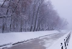 Winter view of frozen Swan Canal on russian sounds `Lebyazhy Canal` and trees covered with snow in the Summer Garden. stock image