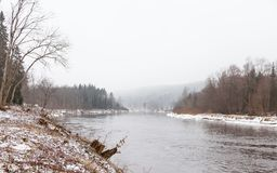 The Gauja River near Sigulda, Latvia. A winter view of the Gauja River near Sigulda, Latvia.  Sigulda is a part of the Gauja National Park Stock Photos