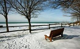 Winter view by the lake. A winter view by the lake Royalty Free Stock Image