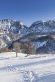 Winter. View in Mehedinti, Romania Royalty Free Stock Image