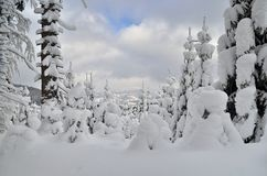 Winter in Mountains. Winter view on gloomily mountains with snow covered trees stock image