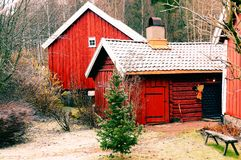 Winter view of the old Norwegian yard. Winter vintage view of the old Norwegian yard. Red wooden farm buildings. Around the vegetation of winter. In the middle royalty free stock photo