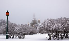 Winter view of the orthodox Church of the Savior on Spilled Blood`Khram Spasa na Krovi` through the trees covered with snow. stock images