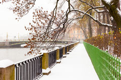 Winter View in the Park Royalty Free Stock Photo