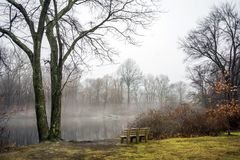 Winter View of Park and Bench. Winter Scenic View of Park Bench with light Fog Royalty Free Stock Photos