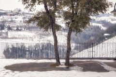 Winter vineyards snowy terrace. Color image. Winter view of a public terrace over the hilly region of Langhe in the southern area of Piemonte Region, Northern stock photos