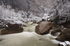 Winter view of river rapids in Zion Canyon Stock Image