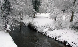 Winter view of river, snow and forest Royalty Free Stock Photography