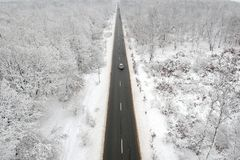 Winter view of a road in the middle of the forest royalty free stock photos