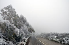 Winter view. Winter in Shar Mountains in Kosovo Stock Image