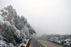 Winter view Stock Image