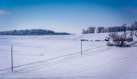 Winter view of snow covered farm fields in rural Carroll County,. Maryland Stock Photos
