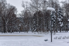 Winter view with snow covered trees in South Park in city of Sofia, Bulgaria Royalty Free Stock Image