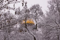 Winter view of St. Isaac`s Cathedral through branches covered with snow. royalty free stock photos