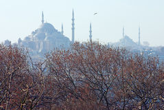Winter view of the Suleymaniye Mosque in Istanbul Royalty Free Stock Photo