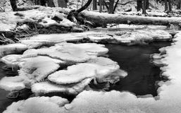Winter view to frozen brook, icy twigs and icy boulders above rapid stream. Reflections of light in icicles. Black and white Royalty Free Stock Photos