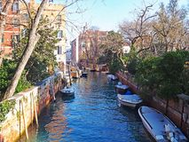 Canal in the Giardini Publici in Venice, Italy. A winter view of a tree lined canal that passes through the Giardini Publici in Venice, italy Royalty Free Stock Photography