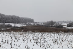 Winter. View of Ukrainian landscape in winter time Royalty Free Stock Image