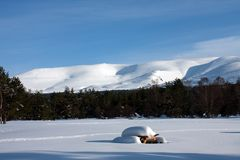 Winter Views at Aviemore Royalty Free Stock Photos