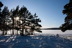 Winter Views at Aviemore Royalty Free Stock Images