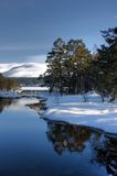 Winter Views at Aviemore Royalty Free Stock Photography