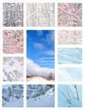 Winter Views In Collage Stock Photo