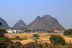 The winter views of rice fields and karst mountain Stock Photo