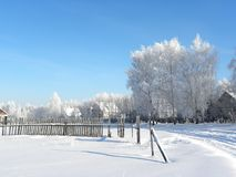 Winter in village royalty free stock photography