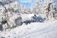 Winter village Stock Photos