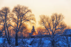 Winter. Village. Evening. Cold sunset in winter village Stock Photography
