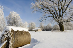 Winter village scenery Royalty Free Stock Photo