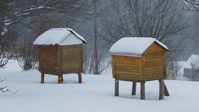 Winter in the village. Snowfall on the background of bee hives. stock video footage