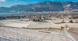Winter vineyards landscape, covered with snow. Trentino Alto Adige, Italy. Main economic factors are viticulture along the South T. Yrolean Wine Route from royalty free stock photography