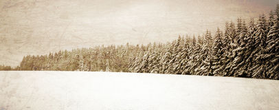 Winter vintage landscape Stock Photography
