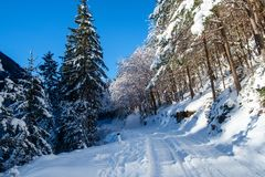 Winter in Vrata valley. Julian alps, slovenia Stock Image