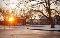 Winter während des Sonnenuntergangs Stockfotos