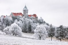 Winter-Wald bewölkt Landschaft mit Smolenice-Schloss, Slowakei stockbilder