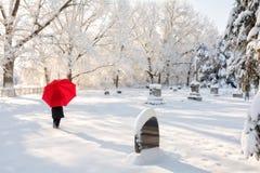 Winter Walk Stock Photography
