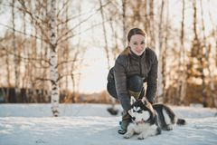 Winter walk with a dog 2551. royalty free stock photo