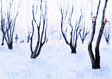 Winter walk in the park Royalty Free Stock Images