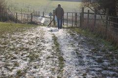 Winter walk2 Royalty Free Stock Photos