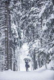 Winter Walk. Woman walking through a park mid winter, whilst trees are covered with snow. She holds an umbrella to protect her from the snowfall Stock Photo